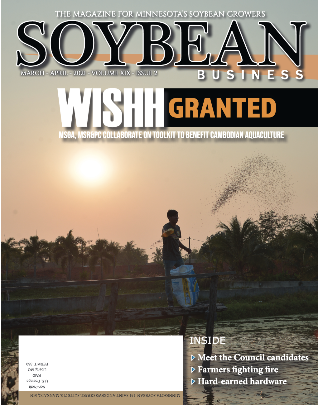soybean business